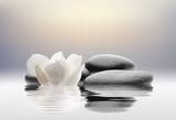 Fototapeta Kamienie - spa con flores agua y piedras