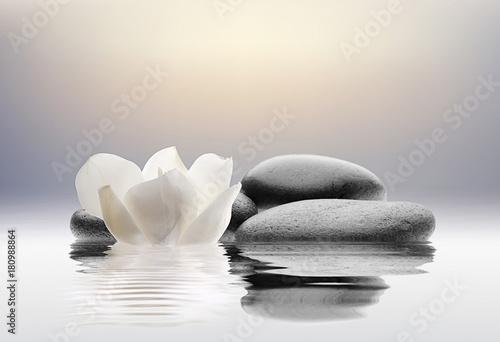 Foto op Canvas Zen spa con flores agua y piedras