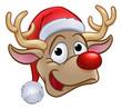 Christmas Reindeer in Santa Hat