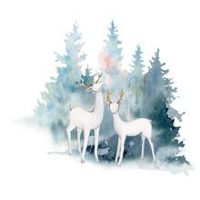 Watercolor Christmas Illustrat...