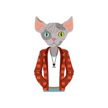 Cute Fashion Sphinx Cat Guy Ch...