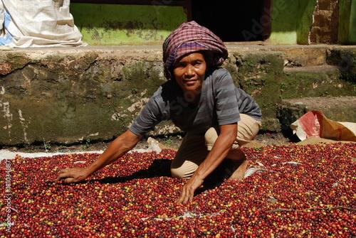 Deurstickers koffiebar Femme étalant les grains de café