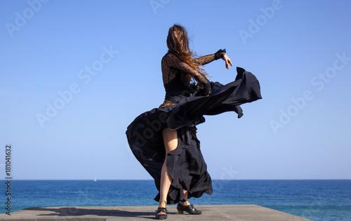 flamenco by oceanside Canvas Print