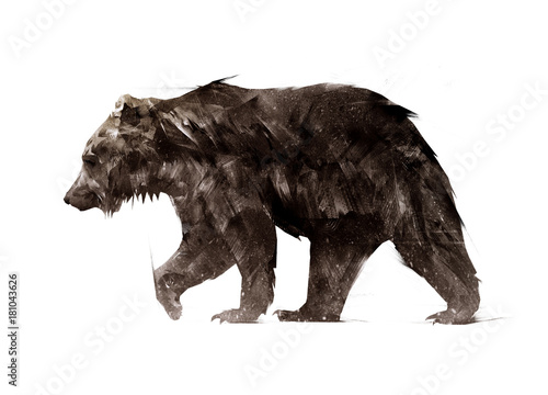 Photo  color painted a walking animal bear side