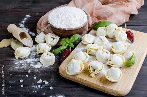 Raw dumplings with meat with flour on dark background Wallpaper Mural