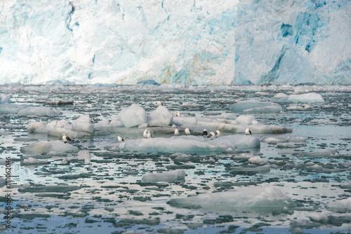 Keuken foto achterwand Poolcirkel Arctic landscape
