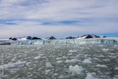 Foto op Aluminium Poolcirkel Arctic landscape