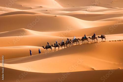 Keuken foto achterwand Kameel Camel caravan to right