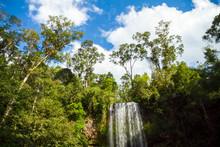 Milla Milla Falls In Australia