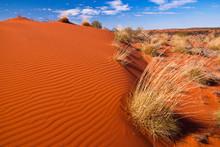 Red Sand Dunes And Desert Vege...
