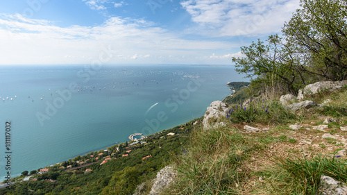Trieste karst plants. Looking to the sea Fototapeta