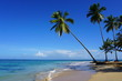 The Punta Popy beach, Las Terrenas, Dominican Republic, carribean, America