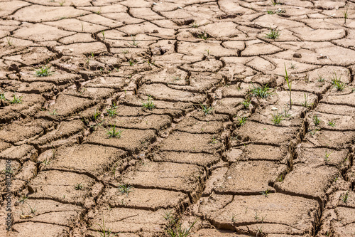 Fotografie, Obraz  Without rain, dry land by drought