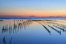 Beautiful Sunset Landscape Vie...