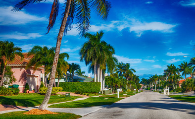 Beautiful street of Floirda with palms and homes