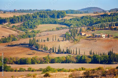 Foto op Aluminium Zalm Sunny september landscape in the fields of Tuscany. Italy