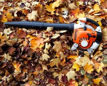 Leaf Blower On A Bed Of Leaves...
