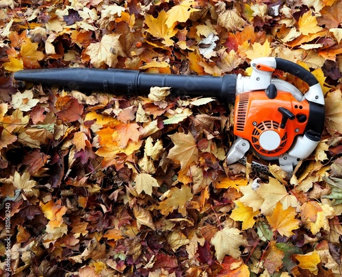 Leaf blower on a bed of leaves in an auntumn day Wallpaper Mural