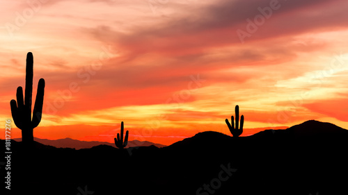 Southwest Desert - Colorful Sunset in Wild West Desert of Arizona with Cactus