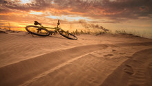 Bicycle In The Desert / Yellow...