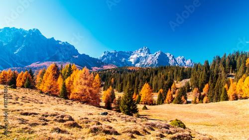 Photo  Autumn trekking in the alpine Pusteria valley