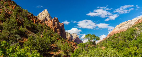 Bright scenery in Zion National Park, Utah, with deep blue skies and red rock formations