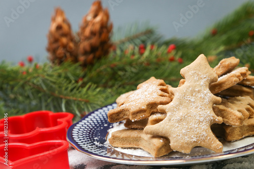 Aluminium Prints Picnic Christmas gingerbread cookies