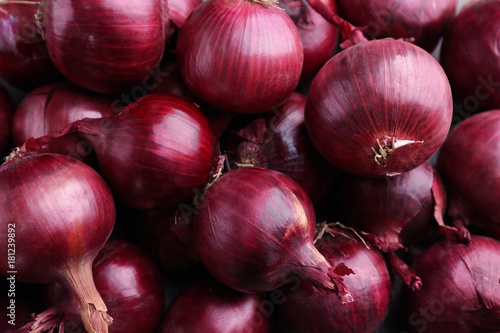 Obraz Red onion, close up - fototapety do salonu
