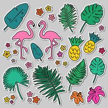 Tropical Sticker Set