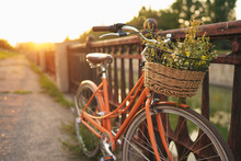 Beautiful Bicycle With Flowers...