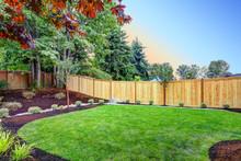 Nice Fenced Backyard With New ...