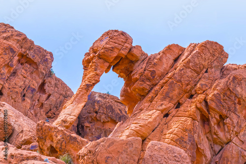 Fotobehang Natuur Park Elephant Rock in Valley of Fire State Park, USA.