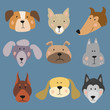 Set of funny cartoon dogs on blue background.