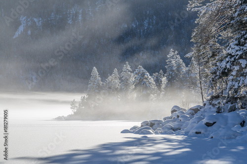 Poster Rose clair / pale Winter am Eibsee