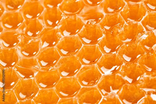 Türaufkleber Makrofotografie juicy honeycombs texture extreme close-up background