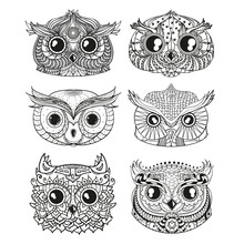 Owls. Heads. Design Zentangle....