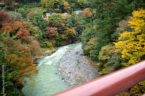 Plakat Jesienna Dolina Okutamy Hikawa