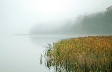 Fototapeta Krajobraz jesienne mgły nad jeziorem
