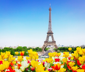FototapetaEiffel Tower and Paris skyline in spring sunny day with tulips, France, retro toned