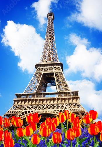 Obraz na dibondzie (fotoboard) EiffelTower w wiosna dniu z kwiatami w Paryż, Francja, retro stonowany