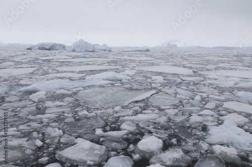 Tuinposter Antarctica Packeis in der Leroux Bay, Antarktis