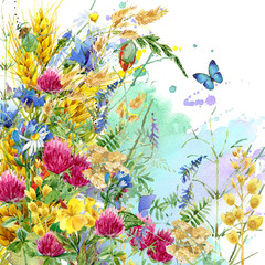 Fototapeta Inspiracje na lato Summer flowers watercolor background