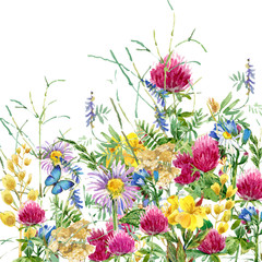 Fototapeta Summer flowers watercolor background