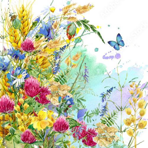 Deurstickers Vlinder Summer flowers watercolor background