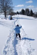 Enfant Ski De Fond