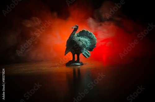 Statue of Turkey Tom strutting his stuff with red wattles and blue/white head on a smoke toned dark background Canvas Print