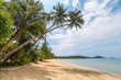 Palm trees on beautiful tropical beach on Koh Chang island in Thailand