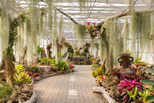 Greenhouse In Queen Sirikit Bo...