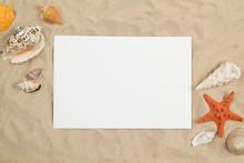 Seashells On Sand With White P...