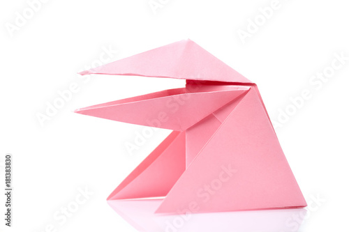 Simplified Frog Origami Design Easy Level For Little Beginners